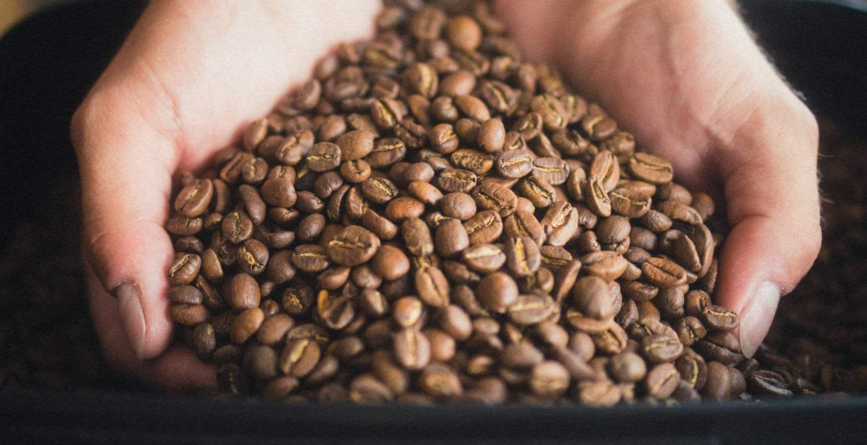 kaffeekueste zerowaste Zero Waste